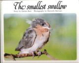 * BURT, Denise : The Smallest Swallow : Hardcover : Childerset