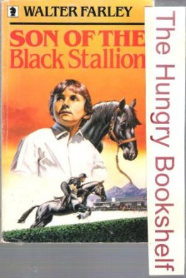 * FARLEY, Walter : Son of the Black Stallion : PB Horse Book